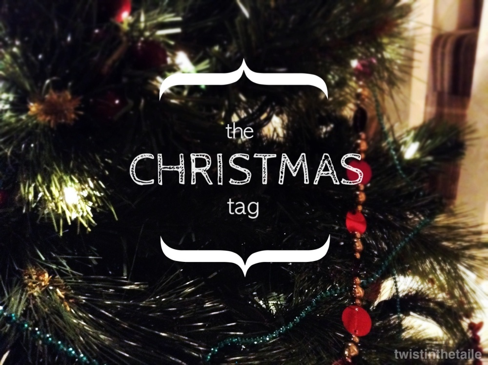 The Christmas Tag (Finally)
