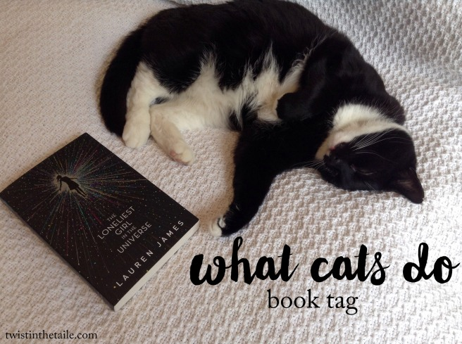 what cats do book tag.jpg