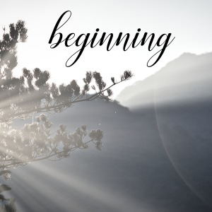 Sunlight streaming out through a tree in the mountains. The word 'beginning' in a script font.